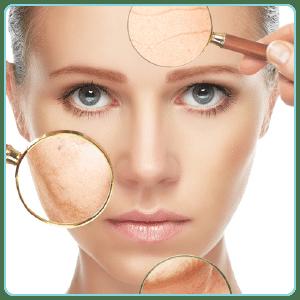 skin rejuvenation areas treated